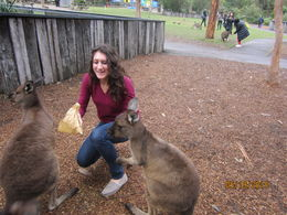 Our daughter Megan was amazed that the kangaroos were as gentle as dogs! , uamomma - May 2015