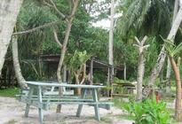 Photo of Penang Monkey Beach Excursion including BBQ Lunch from Penang