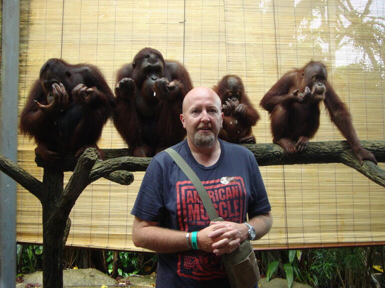 Breakfast with the Orangutangs - Singapore