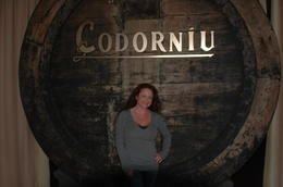 Photo of Barcelona Montserrat and Cava Trail Small Group Day Trip from Barcelona Codorniu Winery