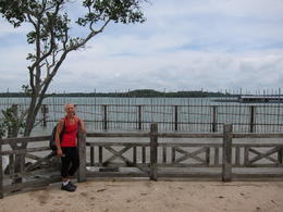 Photo of Singapore Singapore Bike Adventure around Pulau Ubin Mamman (?) Beach looking over to Malaysia