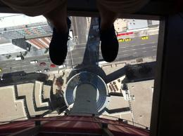 View from the glass floor! , Sarah W - September 2012