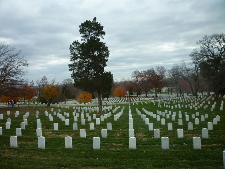 Graves - Washington DC