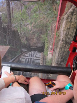 Photo of Sydney Blue Mountains Nature and Wildlife Day Tour from Sydney Train ride