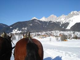 Photo of Salzburg Christmas Horse-Drawn Sleigh Ride from Salzburg Area view
