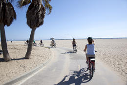 Photo of Los Angeles Electric Bicycle Tour of Santa Monica and Venice Beach Bike parade