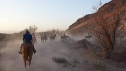 Photo of Las Vegas Wild West Sunset Horseback Ride with Dinner Dusty trails