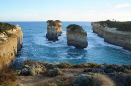 Photo of Melbourne Great Ocean Road Small Group Eco Tour from Melbourne sur la grande route