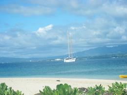 Photo of Fiji Fijian Islands and Snorkel Full-Day Whales Tale Cruise including Beach BBQ Lunch The Wales Tale - with Fiji in the background