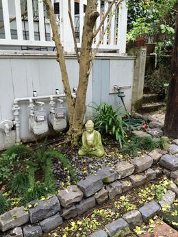 Photo of San Francisco San Francisco Urban Hike: Coit Tower, Lombard Street and North Beach Little Buddhas