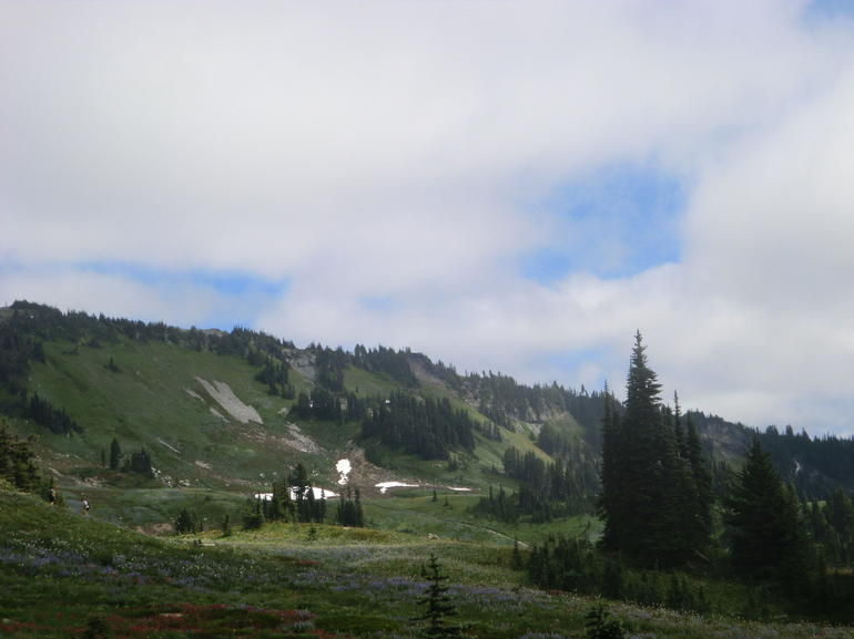 Mount Rainier national Park (9) - Seattle