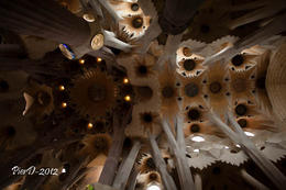 Photo of Barcelona Skip the Line: Barcelona Sagrada Familia Tickets PierD-2012-7959