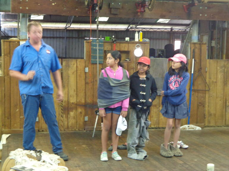 Shearing demonstration - Sydney