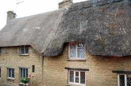 Thatched rooves, canuckshutterbug - November 2009