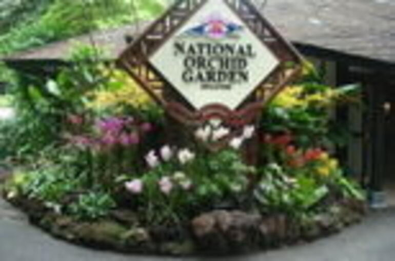 46469_Singapore_Singapore Botanical Garden and National Orchid Garden_d18-20 -