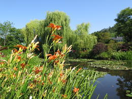 Photo of   Garden at Giverny