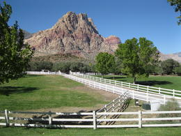 Visiting the ranch on the Red Rock Canyon Tour. , Billie H - November 2011