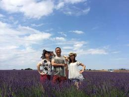 Photo of Provence Provence Lavender Fields Tour from Aix-en-Provence lavender