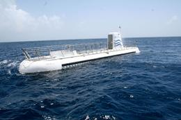 Photo of Barbados Atlantis Submarine Expedition Tour On the surface