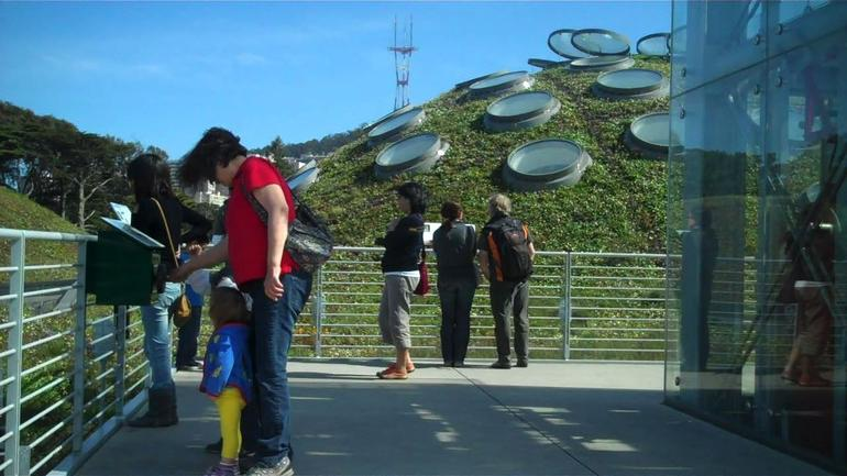 Living Roof, Cal Academy of Sciences - San Francisco