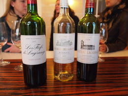 Photo of Bordeaux Small-Group Medoc or St-Emilion Wine Tasting and Chateaux Tour from Bordeaux Wine tasting in France
