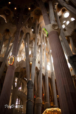 Photo of Barcelona Skip the Line: Barcelona Sagrada Familia Tour PierD-2012-7964