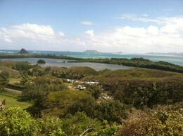 Cool view of the last operating traditional fish pond on Oahu, taylor - March 2013
