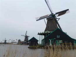 Windmills at Zaanse Schans , Carol A H - March 2013