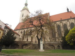 Photo of Vienna Bratislava Day Trip from Vienna A catedral
