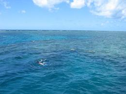This photo shows us snorkeling at the Great Barrier Reef. - April 2008