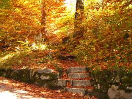 On the path leading up to the castle., Creagh W - October 2008