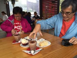 Loads of desserts at Bruny Island Finest Berry Farm , cutiesealion - April 2016