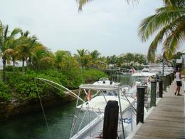 Photo of Nassau Nassau Snorkel Bahamas Adventure The tour operator's facility