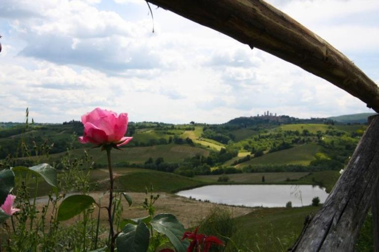 Tuscan Winery - Florence