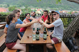 Photo of Vienna Wachau Valley Winery Small-Group Bike Tour from Vienna wine tasting with our group