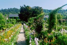 View of garden path and Monet's house, Sonovia K - June 2010