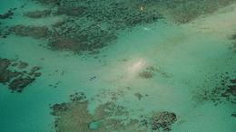 Photo of Cairns & the Tropical North Great Barrier Reef Scenic Helicopter Tour and Cruise from Cairns great barrier