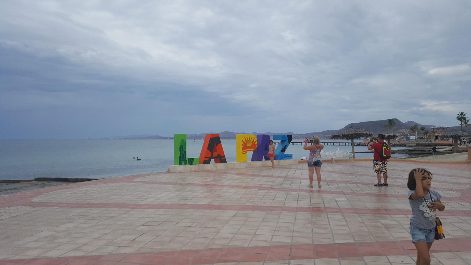 Day Trip to La Paz from Cabo San Lucas