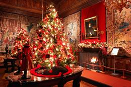 Photo of Paris Christmas Day Trip to Vaux le Vicomte from Paris Holiday decorations