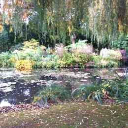 Photo of Paris Versailles and Giverny Day Trip Monets Water Garden
