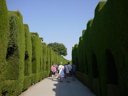 Entering the Alhambra with our tour group, Laura All Over - August 2014