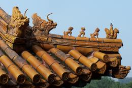 Roof of Summer Palace - Our guide said they are dragon's nine sons, Bing - May 2012