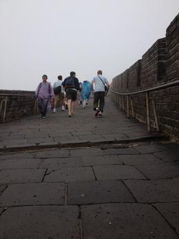 Great Wall, Cat - July 2012