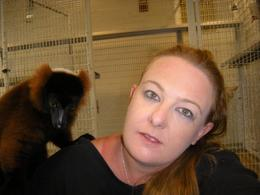 Photo of Miami Jungle Island Miami Lemur on my shoulder!