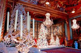 Photo of Paris Christmas Day Trip to Vaux le Vicomte from Paris Lovely decor!