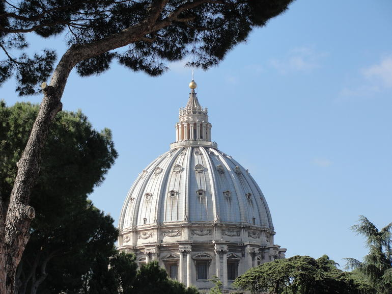Magnificent view of St. Peter's - Rome