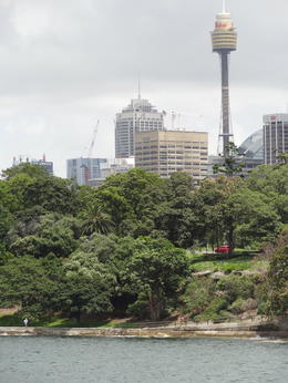Photo of Sydney 2-Day Combo: Sydney City Tour, Sydney Harbour Lunch Cruise and Blue Mountains Day Trip Sydney Tower