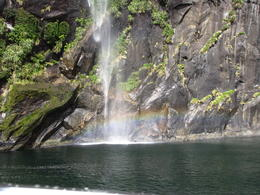 Photo of Fiordland & Milford Sound Milford Sound Sightseeing Cruise including Optional Lunch waterfall