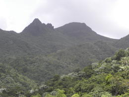From the top of Yokahu Tower, we had an excellent view of Los Picachos Peak, and yes, I could see the profile of the face. , Donna H - August 2014