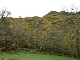 Fairy Glens. A magical place and every shade of green you could imagine. , Ctamjam - April 2012